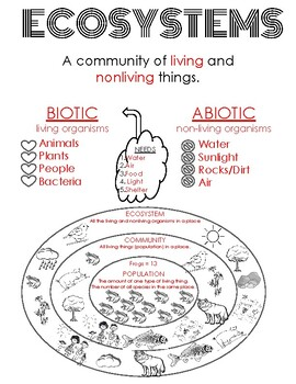 Ecosystem Community Population Abiotic vs Biotic Doodle Notes