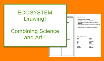 Ecology: Ecosystem Drawing