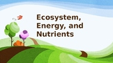 Ecosystem, Energy, and Nutrients