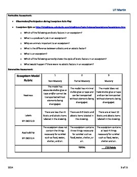 Ecosystem Engineer {a sixth grade science lesson}