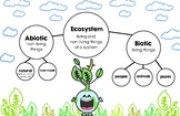 Ecosystem (Environmental Science NGSS)