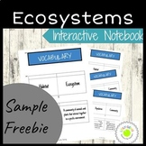 ecosystem foldable teaching resources teachers pay teachers