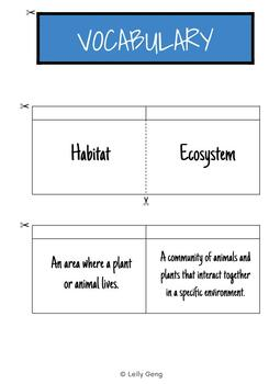 Ecosystem Terms Foldable