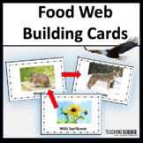 Ecosystem Food Chains Sorting Cards and Activities
