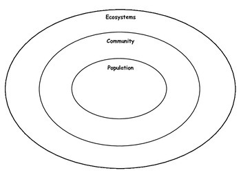 Ecosystem Graphic Organizer