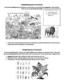 """Ecosystem Guided Notes """"Cheat Sheet"""""""