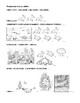Ecosystem Hierarchy Pictorial Study Guide