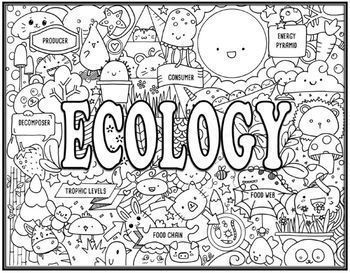 Ecosystem II Seek and Find Science Doodle Pages Bundle