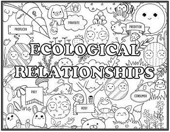 Ecosystems II Seek and Find Science Doodle Pages Bundle