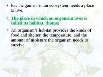 Ecosystem/Interactions of Life PowerPoint