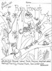 Ecosystem Interactive Coloring Pages
