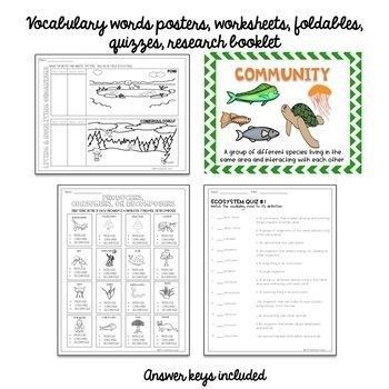Ecosystem Interactive Notebook English & Spanish Versions Bundle