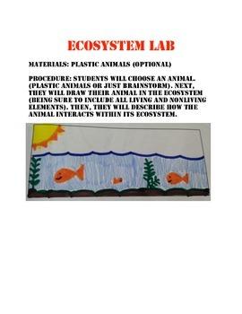 Ecosystem Lab