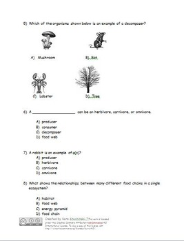 Ecosystem & Living Things Test