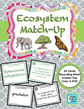 Ecosystem Match-Up Cards