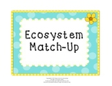 Ecosystem Match-Up:  Matching Game for Test Prep