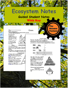 Ecosystem Notes Word Document