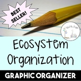 Ecosystem Organization--Graphic Organizer