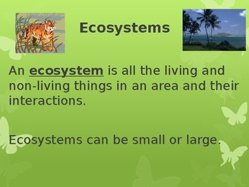 Ecosystem PPT Notes Unit