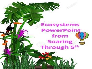 Ecosystem Powerpoint
