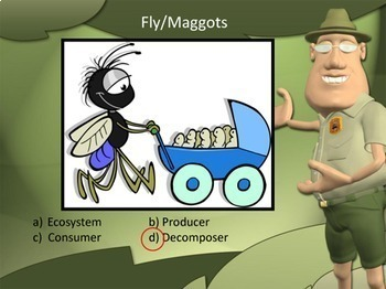Ecosystem Powerpoint Producer Consumer or Decomposer?
