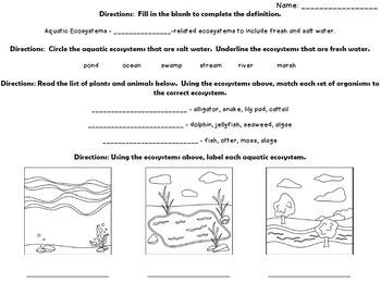 Ecosystem Quizzes