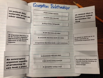 Ecosystem Relationships Interactive Notebook Pages
