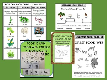 Ecosystem Resources Bundle: lessons, sorts, activities, food chain, task cards