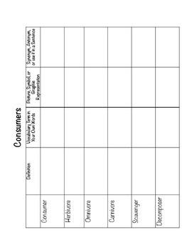 Ecosystem Science Vocabulary