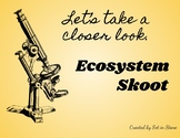Ecosystem Skoot Take a Closer Look