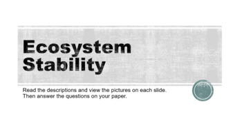 Ecosystem Stability Digital Stations