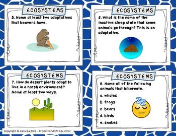 Ecosystem Task Cards