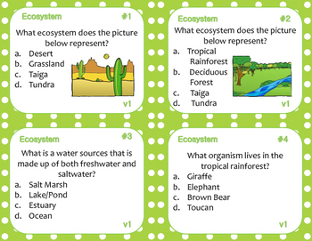 Ecosystem Task Cards (Differentiated)