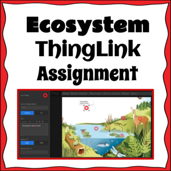Ecosystem ThingLink Assignment