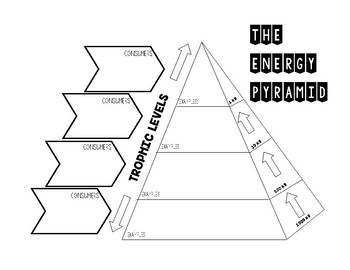 Ecosystem Unit
