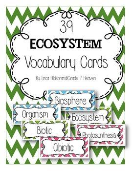 Ecosystem Vocabuary Cards