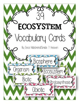 Ecosystem Vocabuary Cards