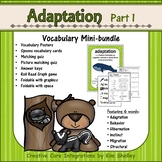 Ecosystem Vocabulary - Adaptations Part 1
