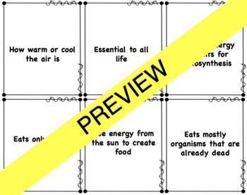 Ecosystem Vocabulary Card Sort