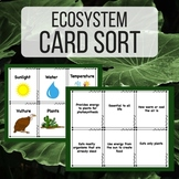 Ecosystem Vocabulary Card Sort