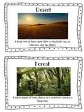 Ecosystem Vocabulary Cards