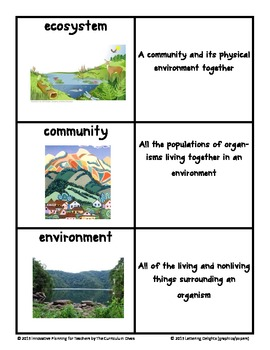 Ecosystem Vocabulary Cards With Pictures By The Curriculum