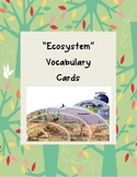 Ecosystem Vocabulary Cards with Pictures