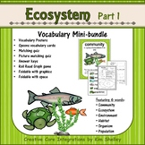 Ecosystem Vocabulary - Ecosystems Part 1