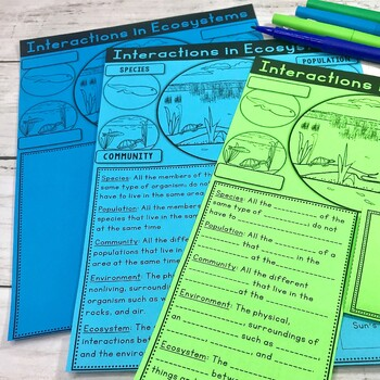 Ecosystems Vocabulary Foldable and Graphic Organizer