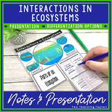 Ecosystem Vocabulary Foldable and Graphic Organizer