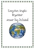Ecosystem Vocabulary Graphic Organizer