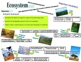 Ecosystem Vocabulary Handout