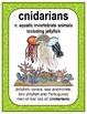 Ecosystem Vocabulary - Invertebrates