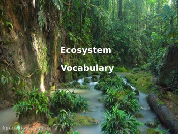 Ecosystem Vocabulary PowerPoint